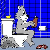 squirrel toilet