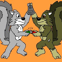 squirrel knife fight