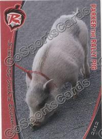 rally pig