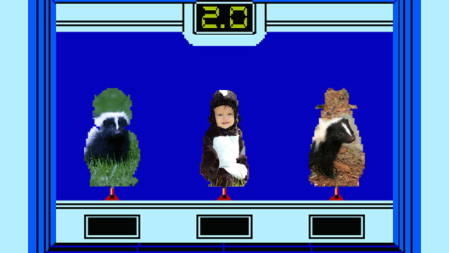 hogans alley skunk