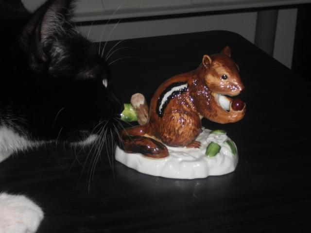 We see a beautiful squirrel figurine.  Ody sees dinner.