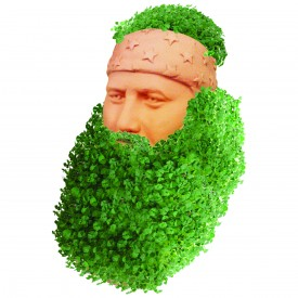Why, it looks just like your beard, Aunt Ethel!