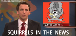 squirrelsinnews