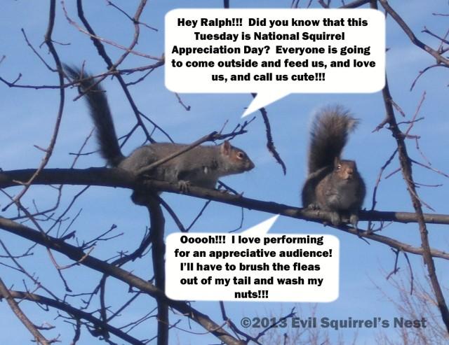 squirrels talking