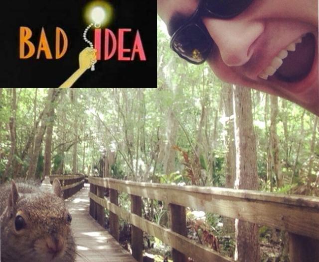 bad idea squirrel