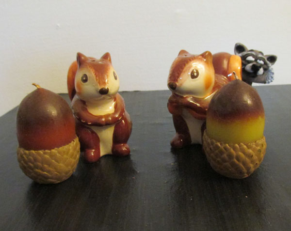 acornsquirrels1