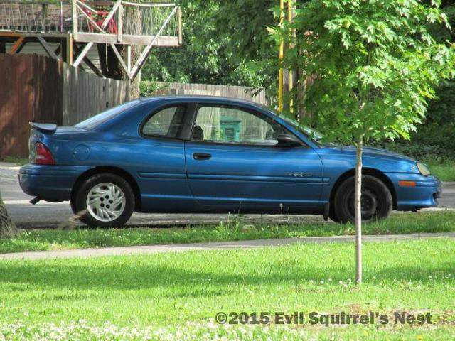 My car patiently waits while I take pictures of squirrels in the park while trying not to look like a pedophile.
