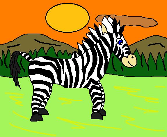 eds zebra1