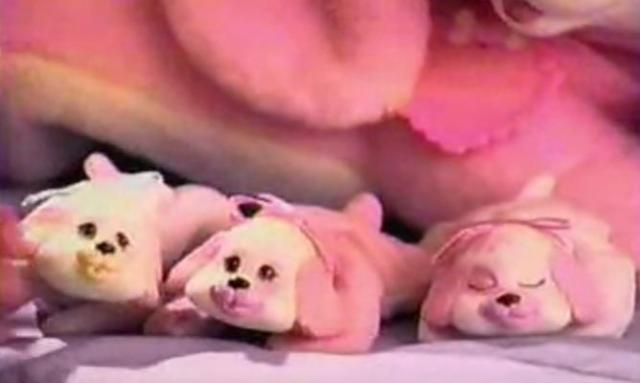 One in five Puppy Surprises comes with a stillborn pup!
