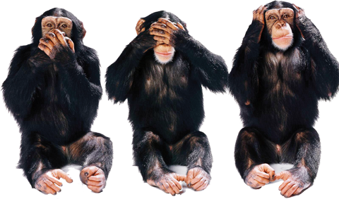 Wordpress' famous helper monkeys work feverishly to respond to bloggers upset about all the stupid changes.