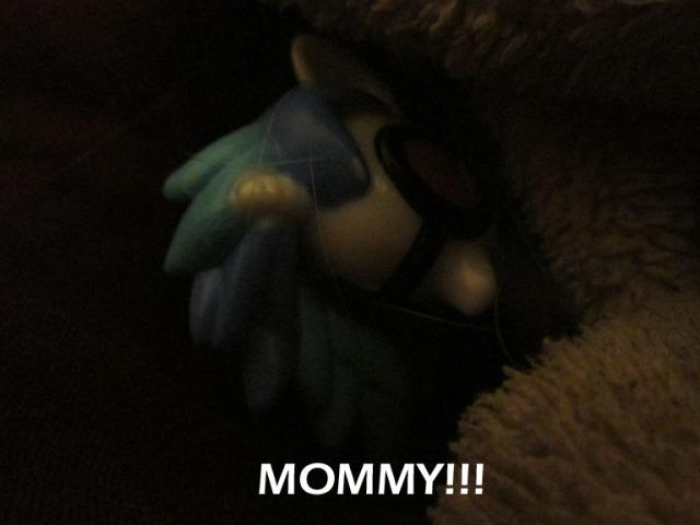 pony carol016