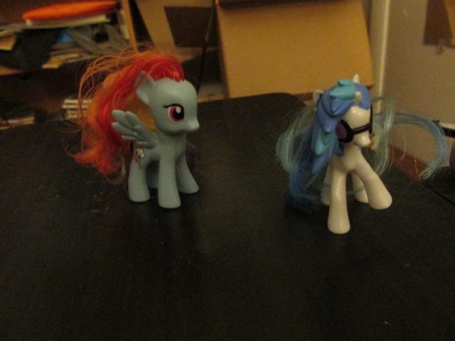 pony carol028