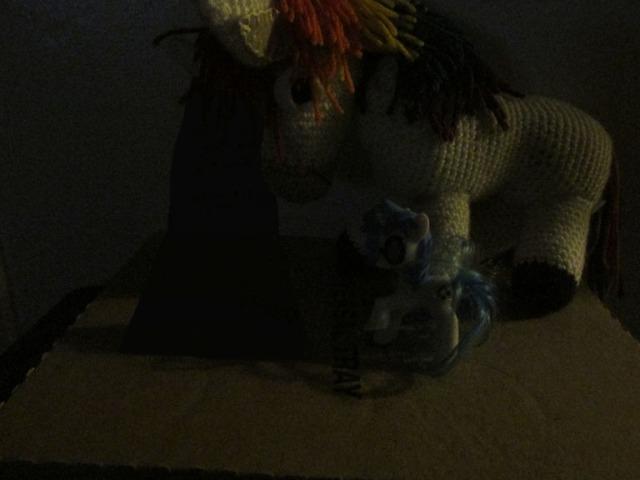 pony carol049