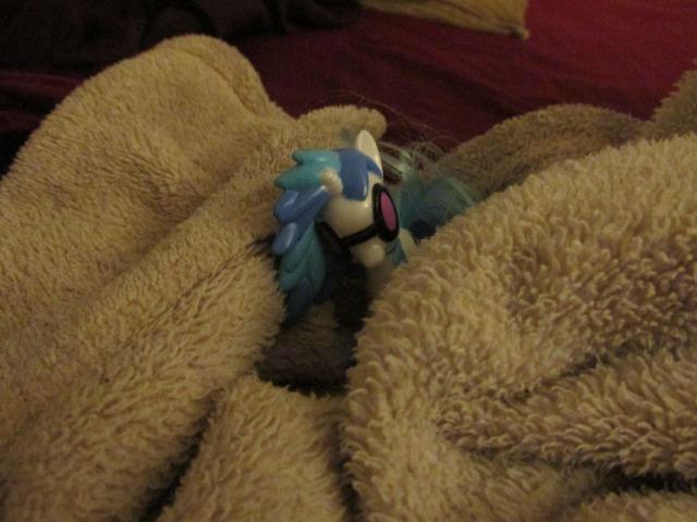 pony carol058