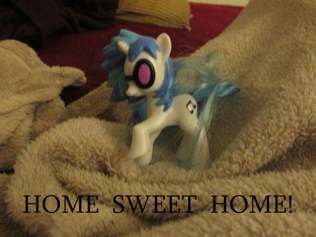 pony carol059