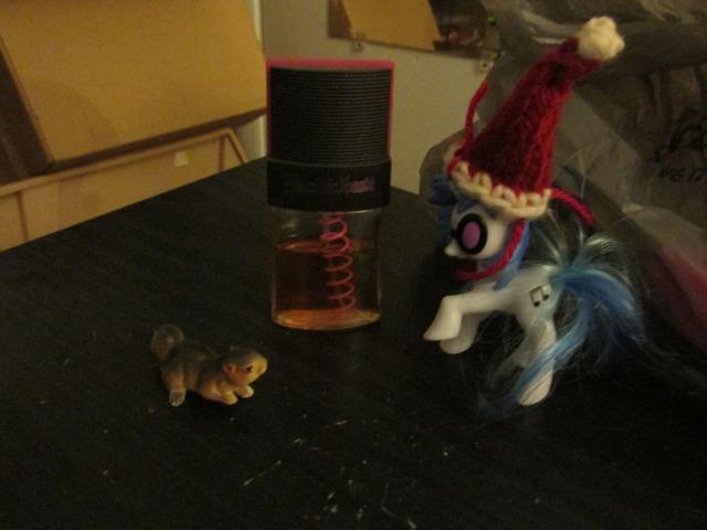 pony carol071