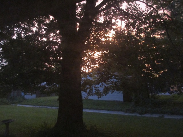 It could be a sunset, or possibly a house fire.  Who knows with that tree in the way...