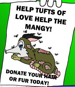 A Tufts of Love flyer.