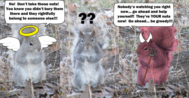 Even squirrels must battle their conscience daily.