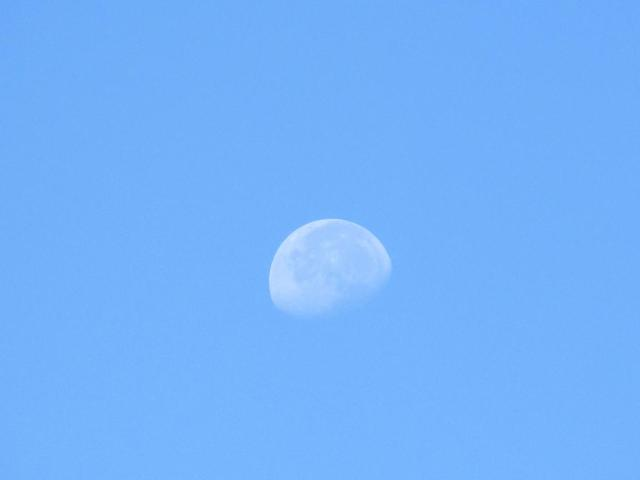 There's nothing more beautiful than the moon at 9:30 AM...