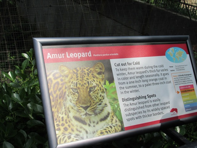 Hello Amur.  How are you doing?