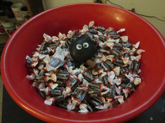 bashful-bowl