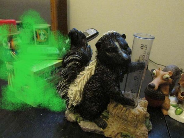 spraying skunk