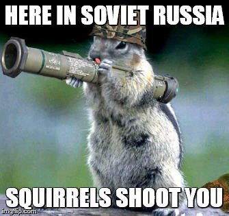 soviet squirrel?w=640 evil squirrel's nest where all the cool squirrels hang out